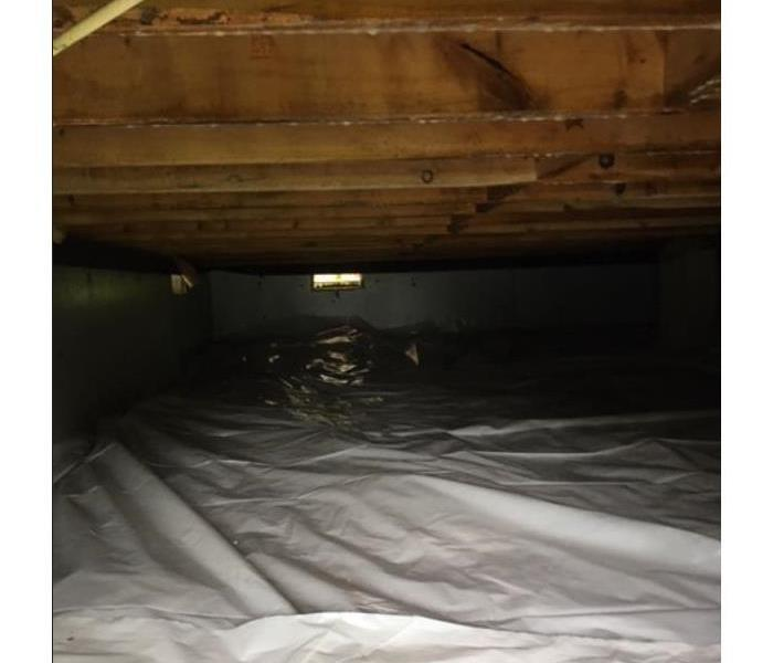Mold Growth found in a Crawlspace After