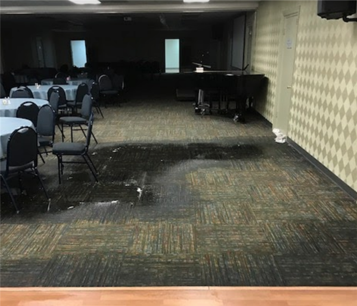 The Importance of Prompt Water Damage Cleanup