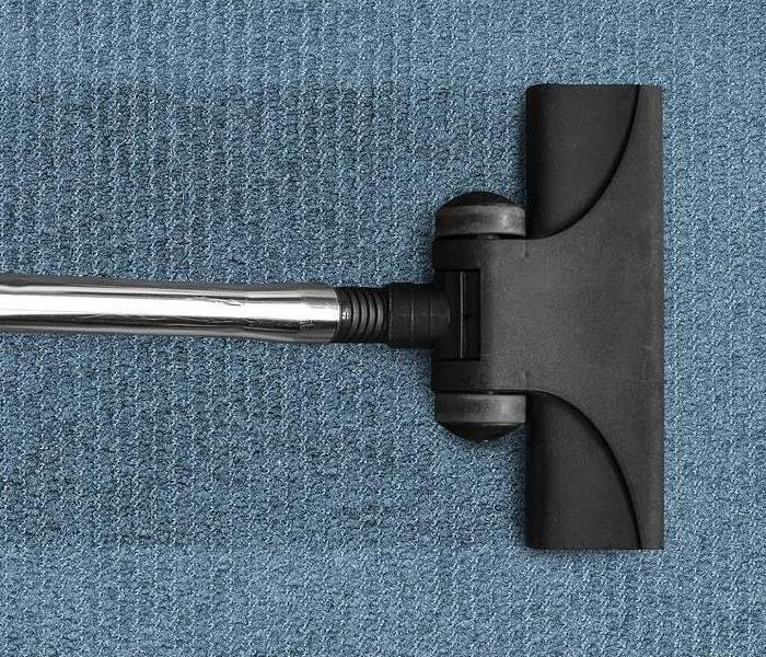 Mold Remediation Handling Mold in Your Carpet