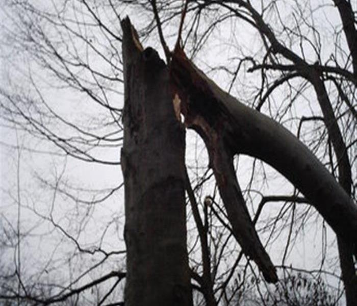 Storm Damage Protecting your Nashville home from storm damage