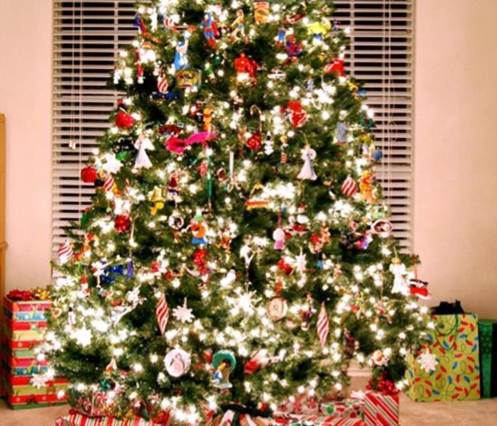 Fire Damage Keep your Nashville home safe from fire damage this year by following these Christmas tree safety tips