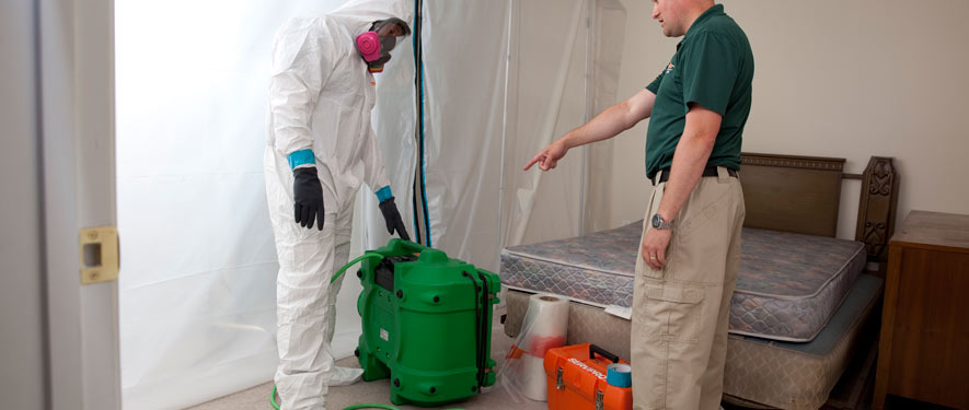 Nashville, TN mold removal process